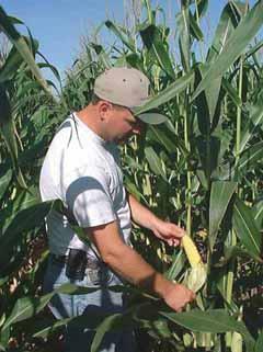 new agronomy 1